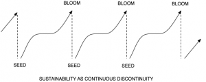 Sustainability - Seed & Bloom