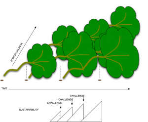 Sustainability - Stability & Growth